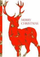 Record Office Christmas Cards - Deer
